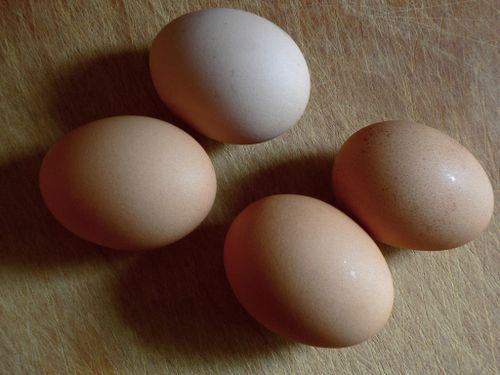 Eggy-weggs by cbcastro