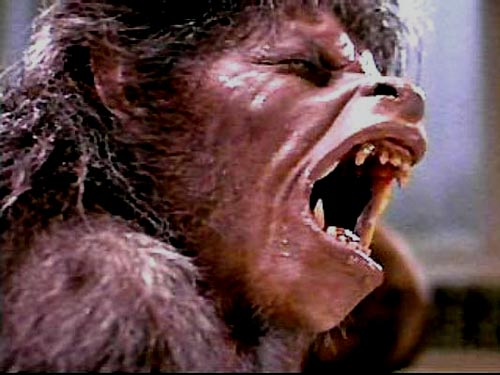 American-werewolf-2