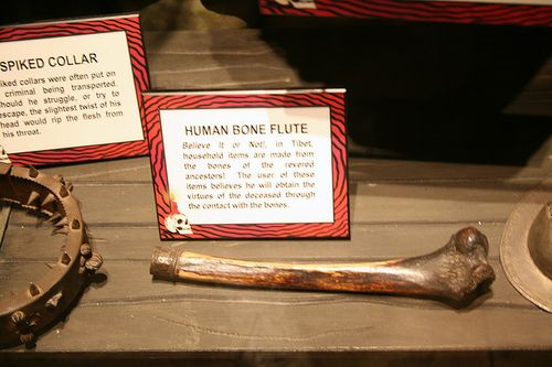 Human bone flute by cliff1066