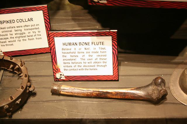 Human bone flute by cliff1066