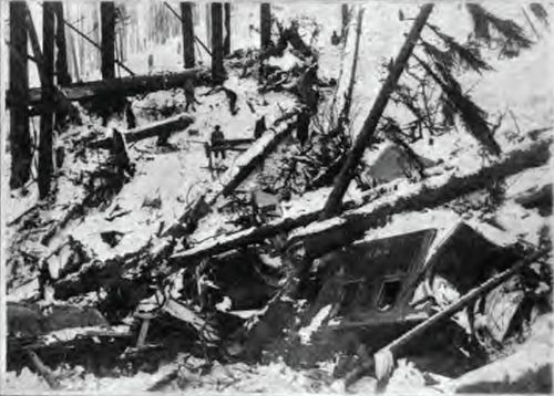 Wellington_Avalanche_Debris