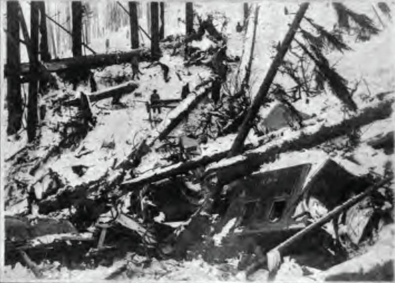 Wellington_Avalanche_Debris