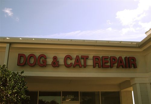 Cat repair by lisatozzi