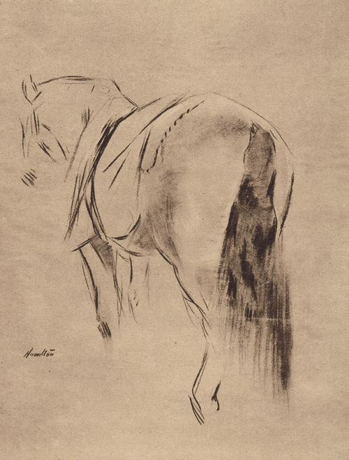 King George V's horse, 'Vanilla', sketched by John McLure Hamilton