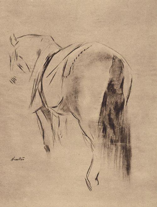 King George V's horse, 'Vanilla', sketched by John McLure Hamilton