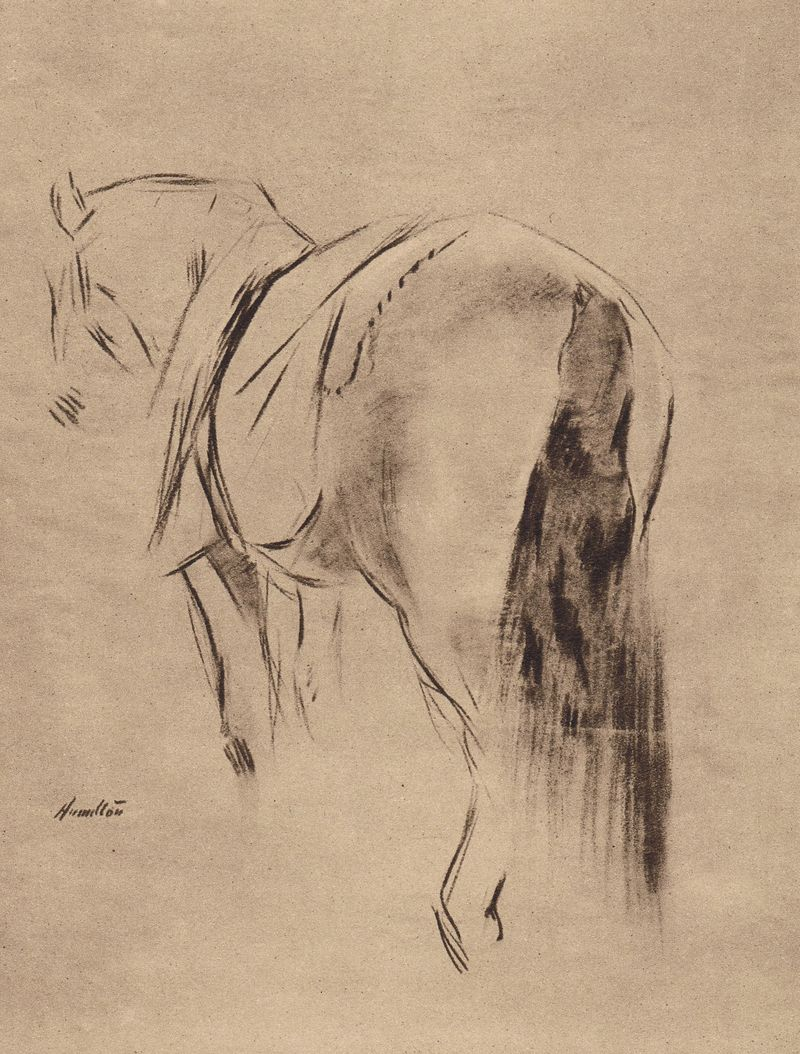 Vanilla - horse of King George V - sketch by by John McLure Hamilton