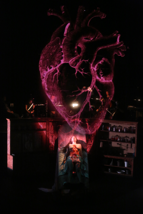 Anatomy theater 3