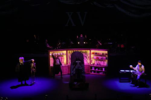 Anatomy theater 2