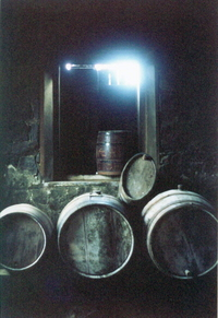 Wine_barrels_photo_by_abrao